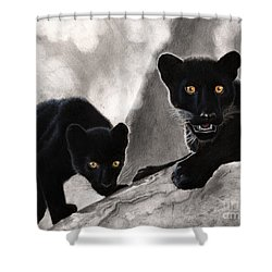 Trouble Shower Curtain by Christian Conner
