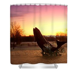 Trout Sunrise Shower Curtain by Joyce Dickens