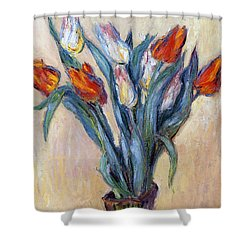 Tulips Shower Curtain by Claude Monet
