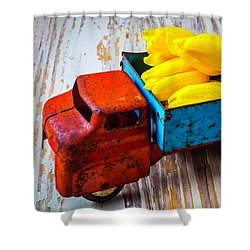 Tulips In Toy Truck Shower Curtain by Garry Gay