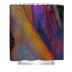 Turning Point Shower Curtain by Richard Laeton
