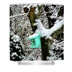 Turquoise Birdhouse In Winter Shower Curtain by Susan Savad