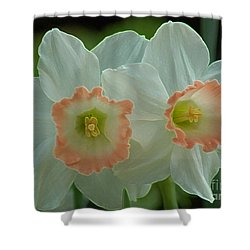 Twins Shower Curtain by Kathleen Struckle