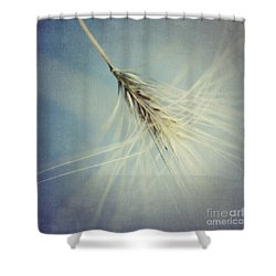 Twirling Shower Curtain by Priska Wettstein