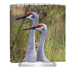Two Sandhills In Green Shower Curtain by Carol Groenen