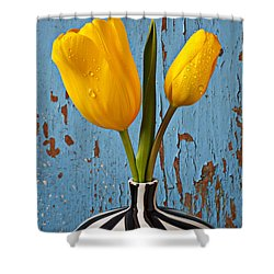 Two Yellow Tulips Shower Curtain by Garry Gay