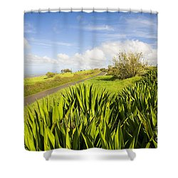 Ulupalakua Country Road Shower Curtain by Ron Dahlquist - Printscapes