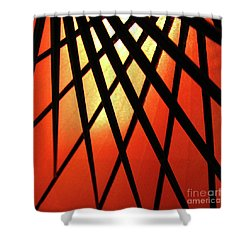 Umbrella 1 Shower Curtain by CML Brown