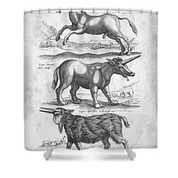 Unicorns Historiae Naturalis 1657 Shower Curtain by Aged Pixel
