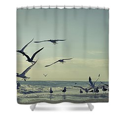 Up Up And Away Shower Curtain by Laura Fasulo
