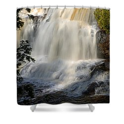 Upper Falls Gooseberry River 2 Shower Curtain by Larry Ricker