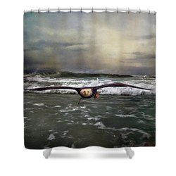Victory Bald Eagle Art Shower Curtain by Jai Johnson