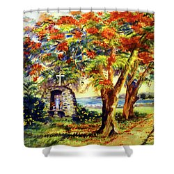 View To Aguadilla Bay Shower Curtain by Estela Robles