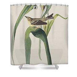Vigor's Warbler Shower Curtain by John James Audubon