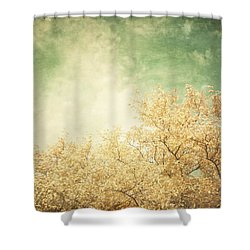 Vintage Autumn Shower Curtain by Lisa Russo
