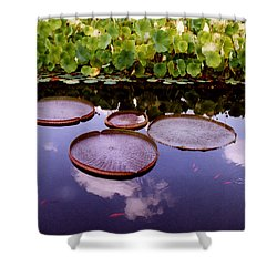 Voices In The Sky Shower Curtain by Jan Amiss Photography