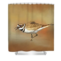 Wading Killdeer Shower Curtain by Donna Kennedy