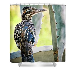 Waiting  Shower Curtain by Saija  Lehtonen