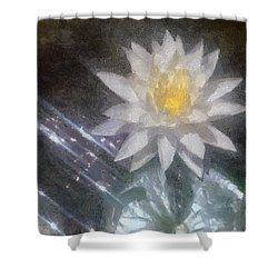 Water Lily In Sunlight Shower Curtain by Jeff Kolker