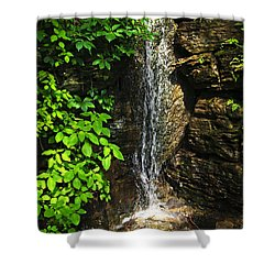 Waterfall In Forest Shower Curtain by Elena Elisseeva