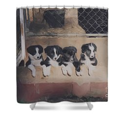 Way Too Cute Shower Curtain by Smilin Eyes  Treasures
