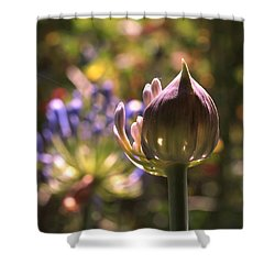 Welcome To The World Shower Curtain by Rona Black