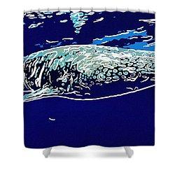 Whaleshark  Shower Curtain by Lanjee Chee