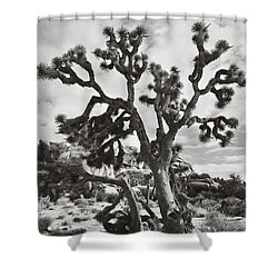 What I Wouldn't Give Bw Shower Curtain by Laurie Search