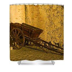 Wheelbarrow Shower Curtain by Sebastian Musial