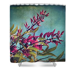 When You Love Someone.... Shower Curtain by Laurie Search