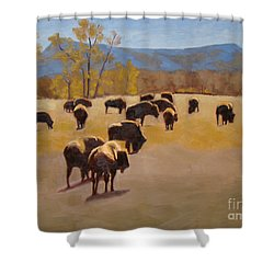 Where The Buffalo Roam Shower Curtain by Tate Hamilton