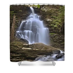 Where Waters Flow Shower Curtain by Evelina Kremsdorf