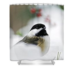 White Winter Chickadee Shower Curtain by Christina Rollo
