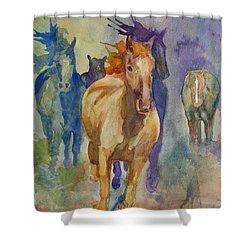 Wild Horses Shower Curtain by Gretchen Bjornson