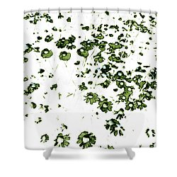 Shower Curtain featuring the painting Wildflower Meadow by Frank Tschakert