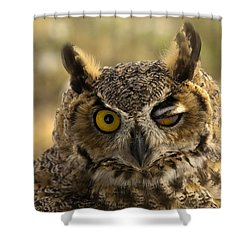 Wink Shower Curtain by Mike  Dawson