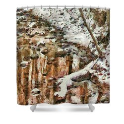 Winter - Natures Harmony Painted Shower Curtain by Mike Savad