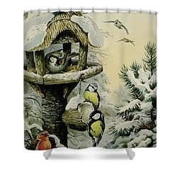 Winter Bird Table With Blue Tits Shower Curtain by Carl Donner