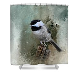 Winter Chickadee Shower Curtain by Jai Johnson