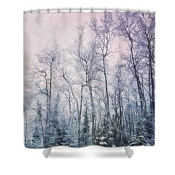 Winter Forest Shower Curtain by Priska Wettstein