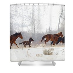 Winter Gallop Shower Curtain by Mike  Dawson