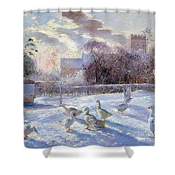 Winter Geese In Church Meadow Shower Curtain by Timothy Easton