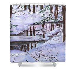 Winter Landscape Shower Curtain by Judy Filarecki