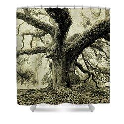 Winter Oak Shower Curtain by Scott Pellegrin