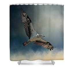 Winter Osprey Shower Curtain by Jai Johnson