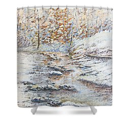 Winter River Shower Curtain by Todd A Blanchard