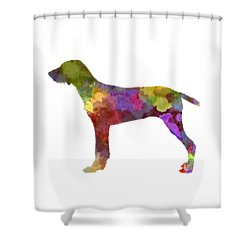 Wirehaired Slovakian Pointer In Watercolor Shower Curtain by Pablo Romero