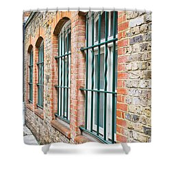 Wndow Bars Shower Curtain by Tom Gowanlock