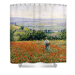 Woman In A Poppy Field Shower Curtain by Leon Giran Max