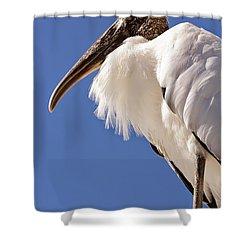 Wonderful Wood Stork Shower Curtain by Carol Groenen